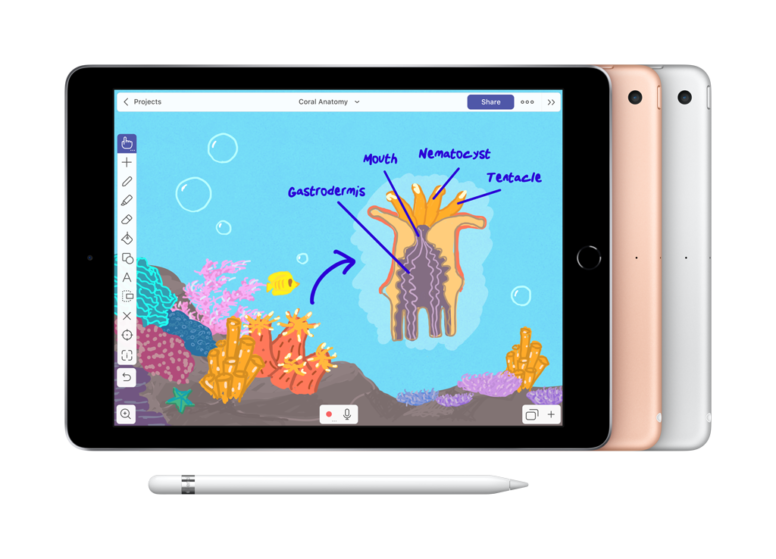 Das Bild veranschaulicht, wie es auf dem iPad aussieht, wenn mit Hilfe einer Zeichnung ein bestimmtes Thema visualisiert wird.